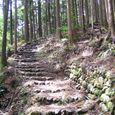 12熊野古道