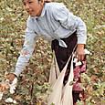 17綿花摘みの少女