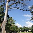 23キリグア遺跡 大広場