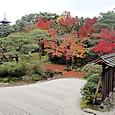 06仁和寺 宸殿の北庭
