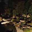 09妙心寺退蔵院 元信の庭