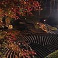 11妙心寺退蔵院 陰陽の庭
