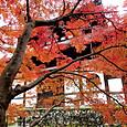 21東福寺 経蔵