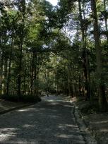 五十鈴川沿いの小径