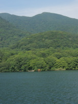 九頭竜神社
