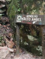 展望台への標識