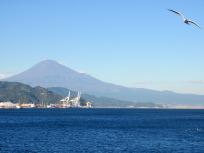 清水港と富士山