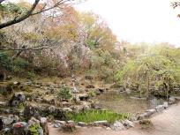竹林院の庭
