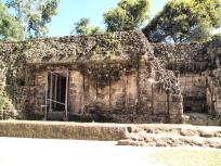 縦溝の宮殿