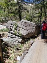岩を回り込む木道