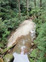 林泉橋の下流