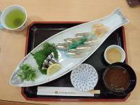 キビナゴ寿司