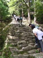 神倉神社の石段(下から)