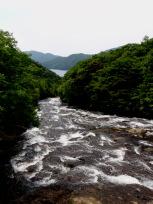 竜頭の滝(上から)