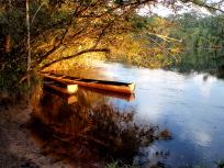 家族のボート