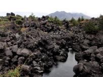 溶岩と桜島