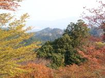 竹林院からの眺め