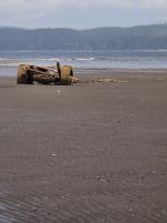 砂浜に残された車