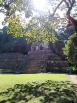 兎の頭蓋骨の神殿