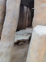 墓所の内側