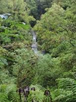 ダッドレイ滝
