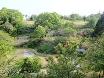 宿のお庭からの景色
